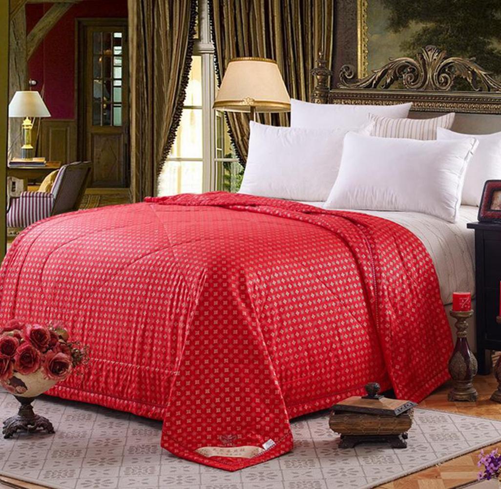 100 Mulberry Silk Filled Comforter Quilt Duvet Coverlet